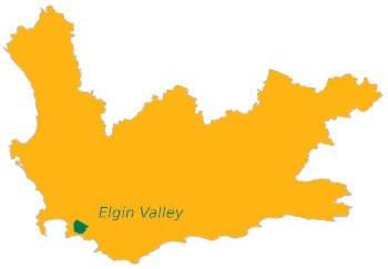 Elgin Valley wijnstreek Zuid-Afrika
