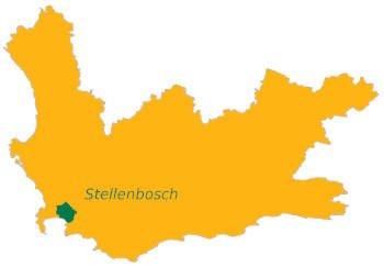 Stellenbosch wijnstreek Zuid-Afrika