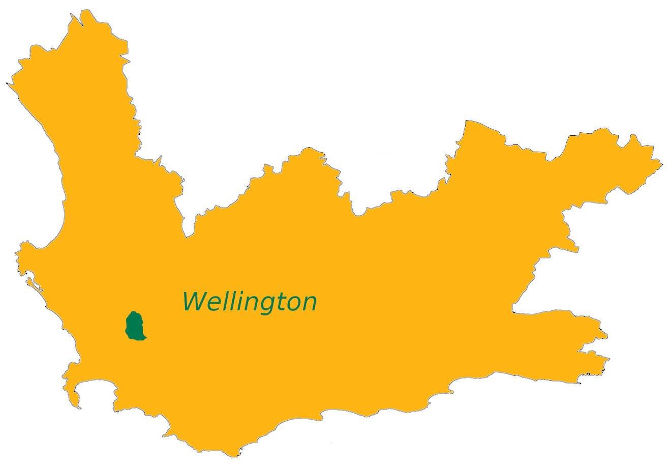 Elgin Valley wijnregio wijnstreek Zuid-Afrika